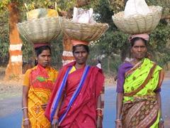 """The Three Amigos""; typical sight on Orissa's roads"