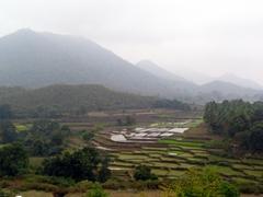Spectacular views from Niayamgiri Hills