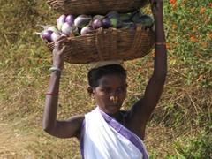 Eggplants for sale at the Dongariya Tribal Market