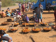 Fresh tomatoes for sale, Dongariya tribal market
