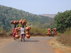 Carrying heavy loads of clay pots to the market