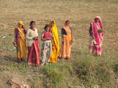 Our ride was having mechanical problems, so while we pulled over for a break, this curious group of Indian ladies took a break from working the fields to check us out