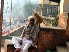 A cheeky monkey hops into this portrait of a man relaxing on some steps leading to the Ganges River; Varanasi