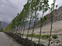 Its a pretty drive from Skardu to Khapulo