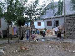 Shigar is full of serene village scenes...we love this place!