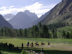 We thought the Naltar Valley was even more beautiful than Shandur for a polo match