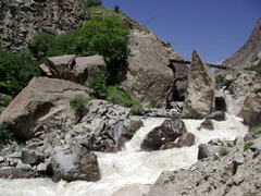 It was a spectacular jeep drive from Gilgit to Naltar