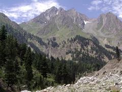 Naltar's alpine scenery