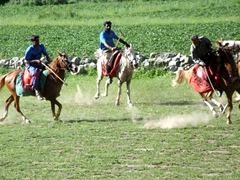 Polo in Pakistan is akin to soccer in Europe...its wildly popular