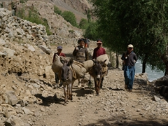 The village boys steer their donkeys which are carrying our heavier gear up to Hundrap Lake