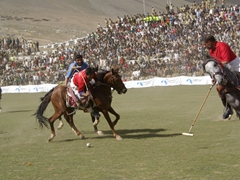 It takes an incredible amount of talent, skill and discipline to be a good polo player