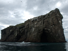 One of the many small islands of the Westman Islands. This one is completely inhabited by birds (puffins, auks, fulmars or seagulls)