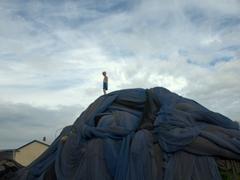 A boy plays atop a massive pile of blue fish nets; Heimaey Island