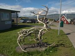 Reindeeer sculpture made of antlers; Djúpivogur
