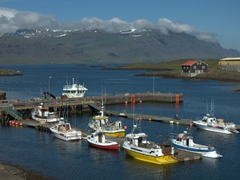 View of Djúpivogur's petite harbor