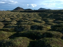Moss covered volcanic mounds; Leirhnjukur Krafla lava field
