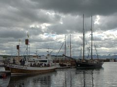 Reputed to be Europe's whale watching capital, Húsavík's harbor is full of boats