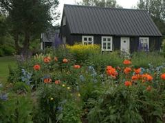 Peaceful scene at the Arctic Botanical Gardens (Lystigarðurinn) of Akureyri