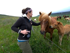 Becky pets a friendly Icelandic horse while its foal looks on