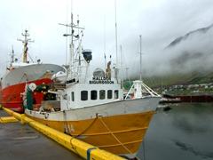 Fishing boats in the Ísafjörður harbor
