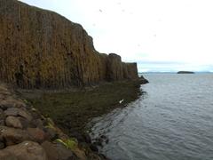 A columnar basalt cliff in the town of Stykkishólmur