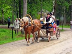 Horse cart, Rocca al Mare open air museum