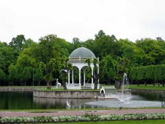 Kadriorg Park Swan Lake