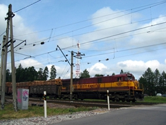 A train transporting tree trunks