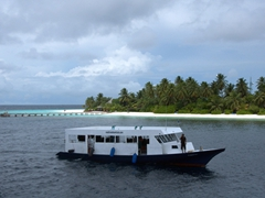 The MV Stingray dhoni against the gorgeous backdrop of a typical island resort