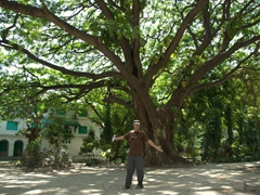 Robby strikes a pose beneath a massive tree in Malé's Sultan's Park