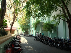 A shady tree lined street in Malé