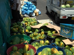 Buckets of fresh papaya for sale near the Malé fruit and vegetable market