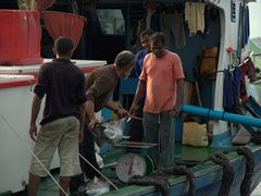 First priority of business is to weigh the tuna, to see what price tag it will fetch in the Malé fish market