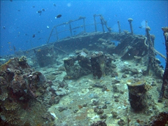 The Kudhima Wreck is a pristine shipwreck with plenty of growth to keep the dive interesting; South Ari Atoll
