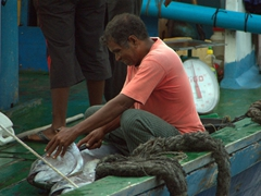 A fisherman prepares to gut his fresh catch by the harbor side; Male