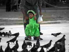 Portrait of a young Maldivian girl excitedly chasing pigeons in Jumhooree Maidan, the main square of Male