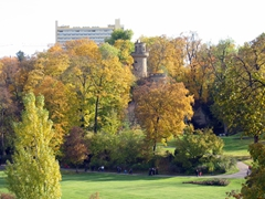 On our short stroll from the Ludwigsburg Palace to the Schloss Favorite (hunting chateau), we passed by pretty fall foliage