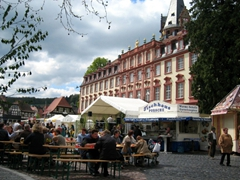 An impromptu Spring festival at Erbach'sschloss (Palace) was a great way for us to get acquainted with this fine city