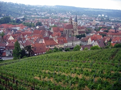 Esslingen is wine lovers country! It is surrounded by vineyards that envelop this 13th Century town