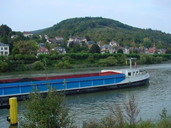 Cargo is transported down the Neckar River; Heidelberg