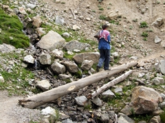 Becky walks across a makeshift bridge on our short trek up to Fairy Meadows
