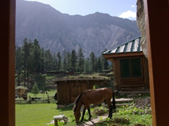 A picturesque view from Raikot Sarai Cabins