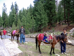 After the polo match, we coordinated horseback rides up to Beyal