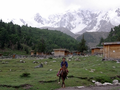 While we trekked up to View Point, our horse guides waited in Beyal