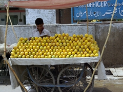 The mangoes in Pakistan are super sweet, a must for mango-lovers!