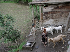 Birir's village well is a well trafficked area (the Kalash Guest house's outhouse is in the background)