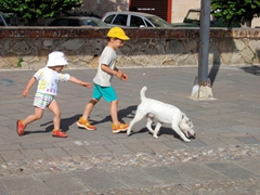 Kids chasing their dog; Alghero