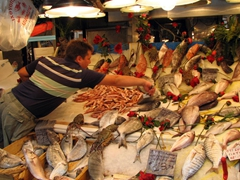 Lots of fresh fish for sale at Athens's lively fish market