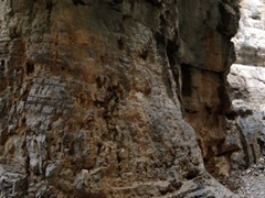 The 8km Imbros Gorge is not as popular as its sister gorge (Samaria Gorge), but we enjoyed our crowd free hike