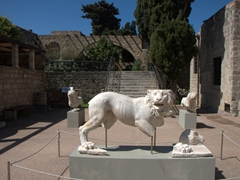 Marble lion statues in the courtyard of the Archeological Museum; Rhodes